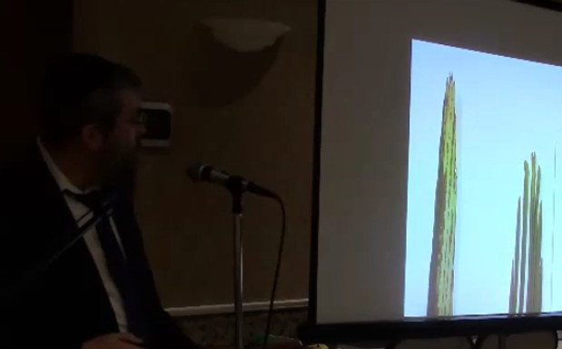 Daled Minim Presentation - Rabbi Avrohom Reit