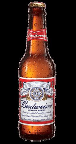 Cerveza Botellin Budweiser