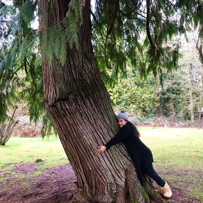 WA tree hugger 2.jpeg