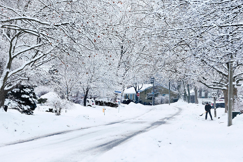 Snow covered streets, trees in Toronto neighbourhood April 2018