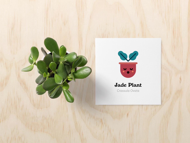 jadeplant-card_edited.jpg