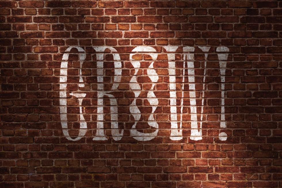 Wall-Worn-Out-Logo-Mockup.jpg