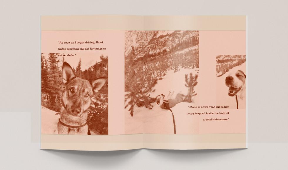 h&h-booklet.jpg