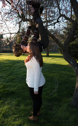 love in a tree