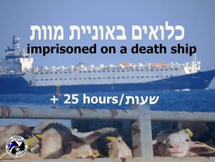 כלואים באוניית מוות מעל 25 שעות