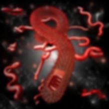 ARTN_Ebola_Virus.jpg