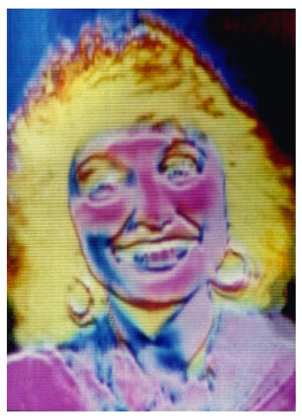 Image Processed Video Portrait of Ellen Sandor, 1986