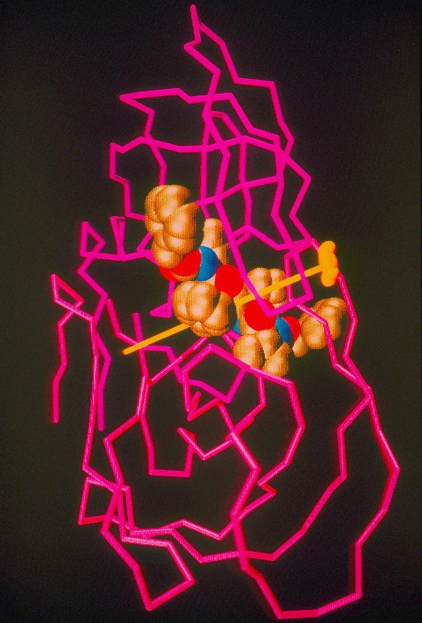 HIV Protease w:Inhibitor.JPEG