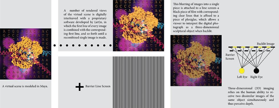 PHSCologram+Explained.jpg