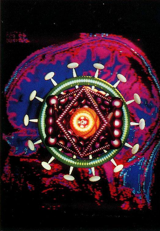1990_ART2Labratory_RobertMapplethorpeThe