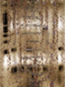 Cryptobiology_980.jpg