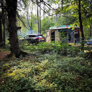 Peek a boo #trailmarker #peekaboo #nature #adventure #camping #explore #love #adirondacks #freedom #jeep #forgeoverland #overlandkitted
