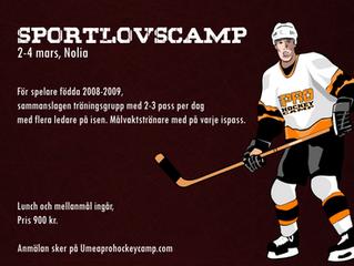 Info och anmälan Sportlovscamp 2-4 mars