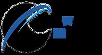 Network Minds Transp Logo Draft 2.png