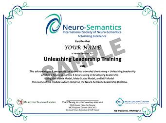 Neuro-Semantic Basic Leadership Diploma - SAMPLE.png