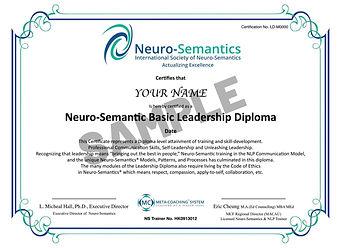 Neuro-Semantic Basic Leadership Diploma -Sample(New).jpg