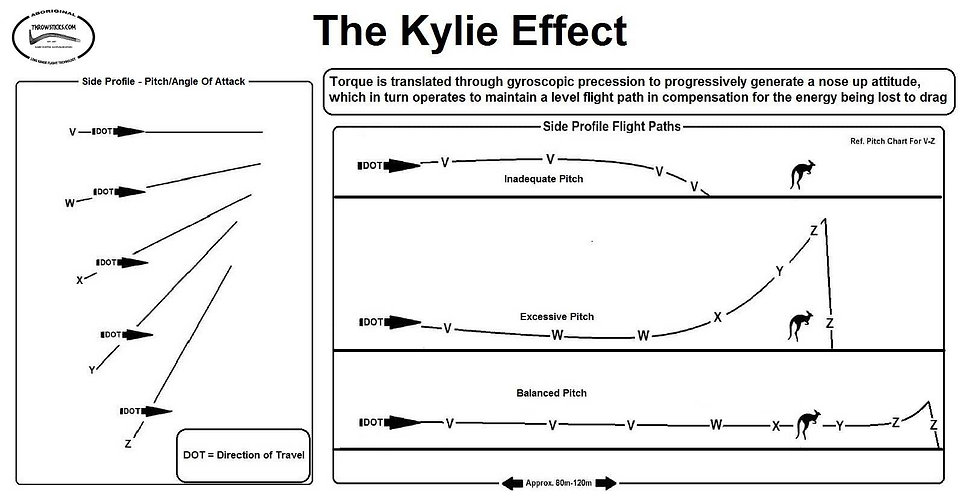 The Kylie Effect Aboriginal Kylies Hunting Boomerang Survival Throwstick