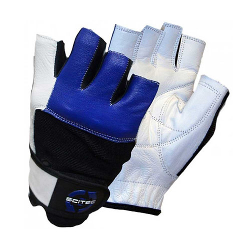 SCITEC NUTRITION BLUE LEATHER STYLE GLOVE