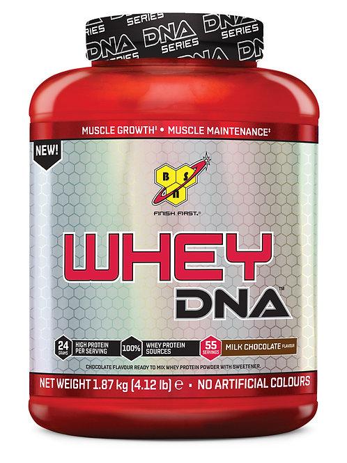 BSN DNA WHEY (1.87KG)