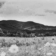 Other Cades Cove 2.JPG