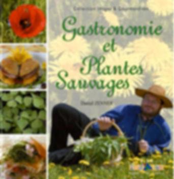 Gastronomie et plantes sauvages  ID Edit