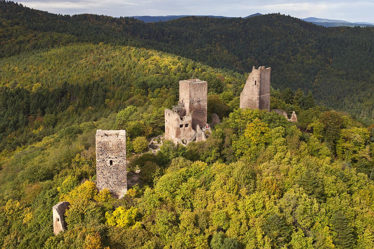 Chateaux Eguisheim 1
