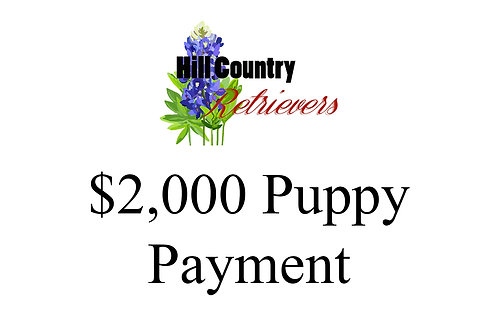 Puppy Payment in Full
