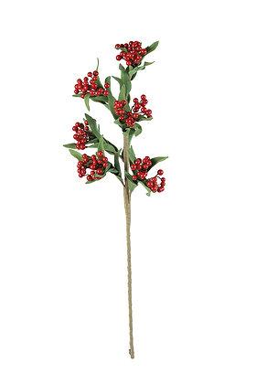 Botanica 3159