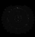 aibp logo.png