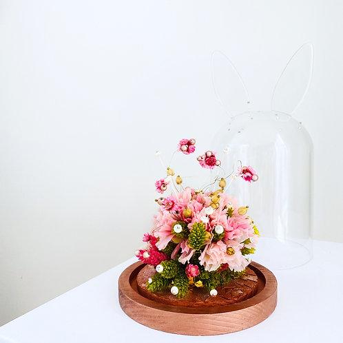 Rose « Mon lapinou »