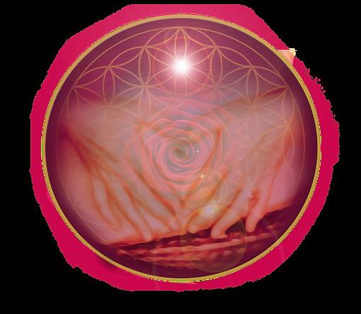 4_Womb-Devotion.png