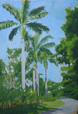 Royal Palms on the drive at Great River,