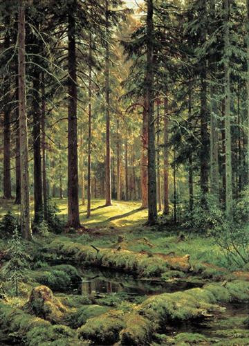 Coniferous Forest Sunny Day,1895, Ivan Shishkin, oil on canvas, Russian Museum, St. Petersburg