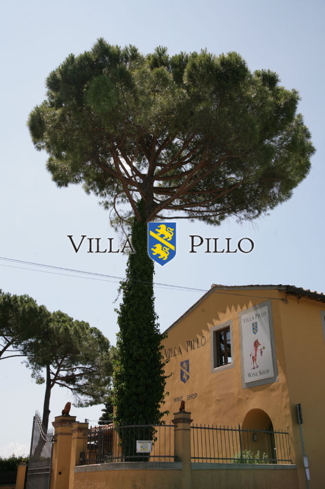 Villa Pillo