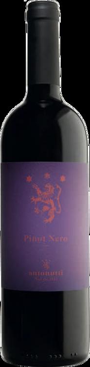 Pinot Nero DOC - Casa Vinicola Antonutti - Friuli Venezia