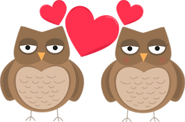 owl heart.png