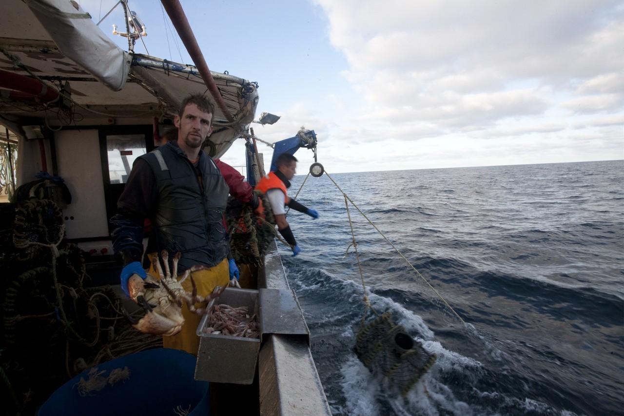 Calibrer la pêche