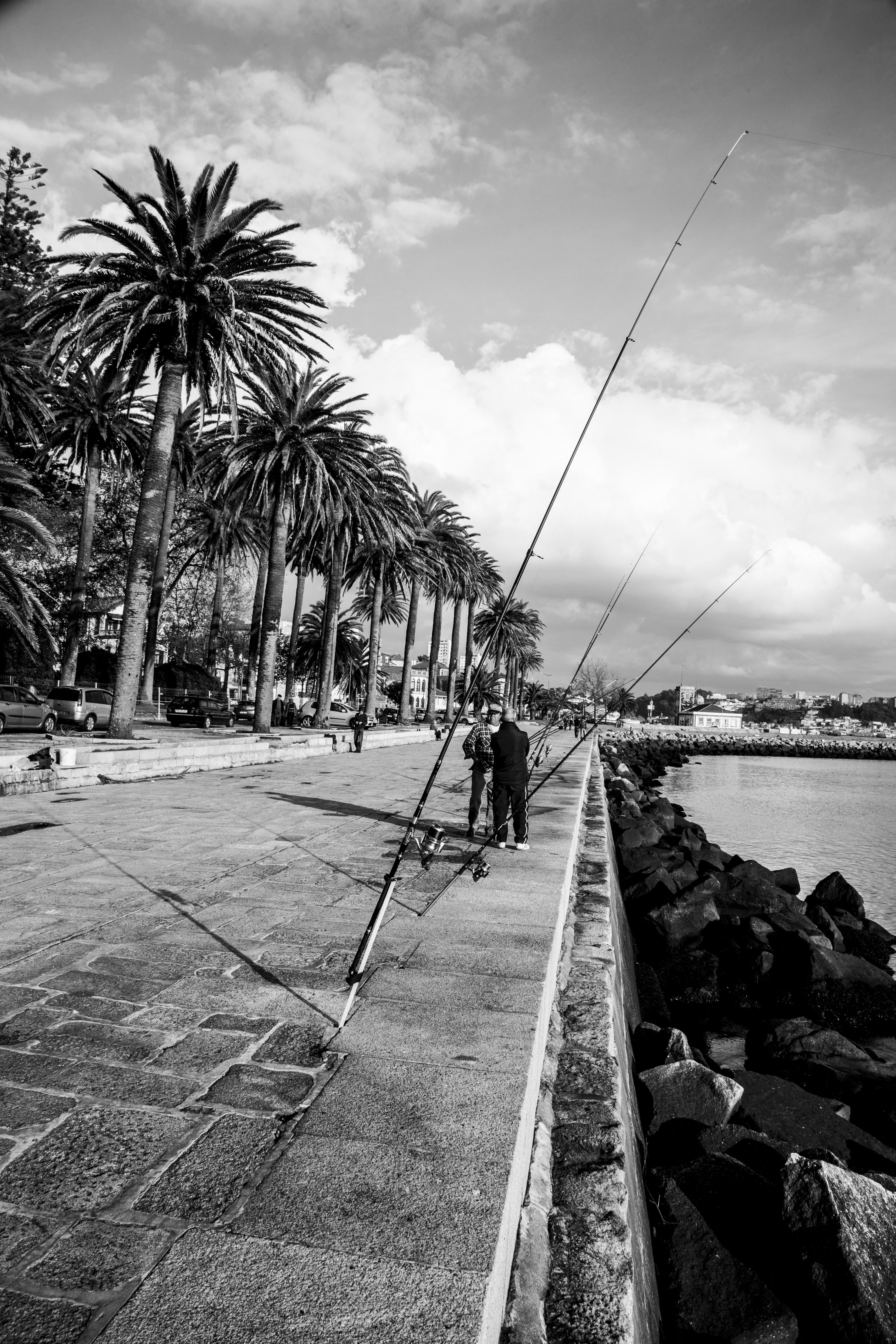Les pêcheurs de porto