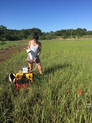 LGR portable Gas analyzer in the field.J