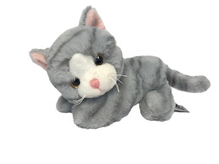 Katt Miranda