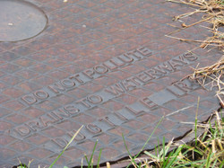 Stormwater can transport pollutants