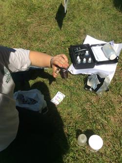 22_Testing for dissolved oxygen