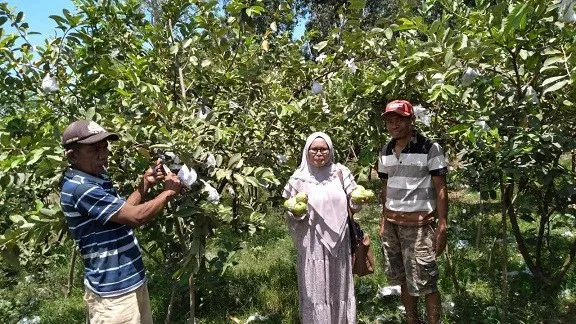 Dosen STP Mataram Berinvestasi di Agro Eduwisata Bre Kabupaten Bima