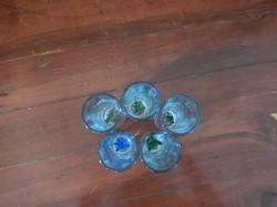 Shot glasses - agave/cactus