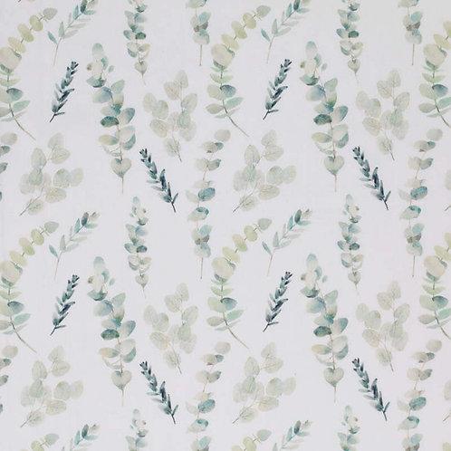 Bw-Jersey Eukalyptus