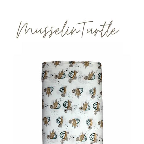 Musselin Turtle