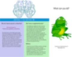 Tri Fold Brochure - Back.jpg