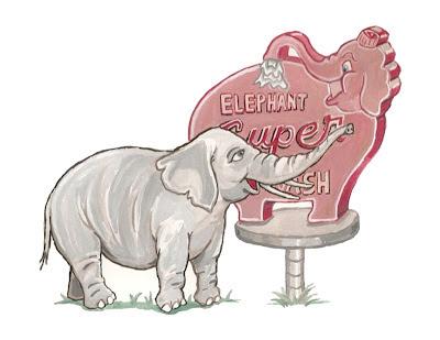 Elephant, Eli Wolff