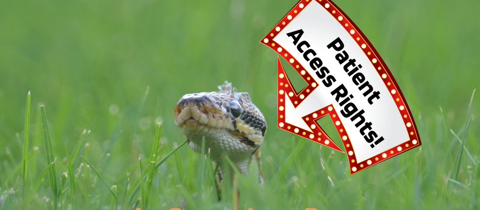 Patient Access Rights - A Snake in the Grass...