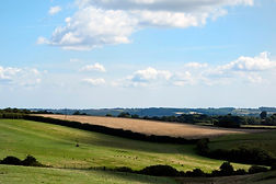 Shire-Farm-landscape1_edited.jpg